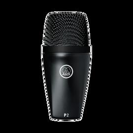 P2 - Black - High-performance dynamic bass microphone - Hero