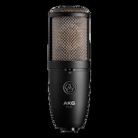 P420 - Black - High-performance dual-capsule true condenser microphone - Hero